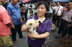 Dog-eating festival in China hounded by activists - The Washington Post 6/21/2014
