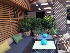 Buxus sp+lavandula angustifolia en un rincon de la terraza del Hotel Gallery de Barcelona,.