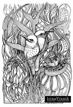 Welcome To Dover Publications Creative Haven Deluxe Edition Animal