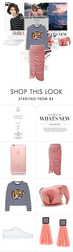 """Lazy days"" by karliuxxx ❤ liked on Polyvore featuring Lazy Days, StyleNanda, Assouline Publishing, VIVETTA, Gucci, Loewe, Common Projects, Fendi, skirt and Sweater"