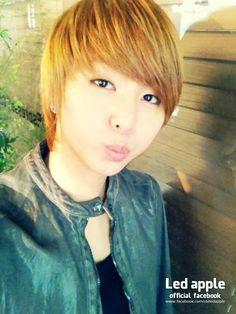 Youngjun LED apple
