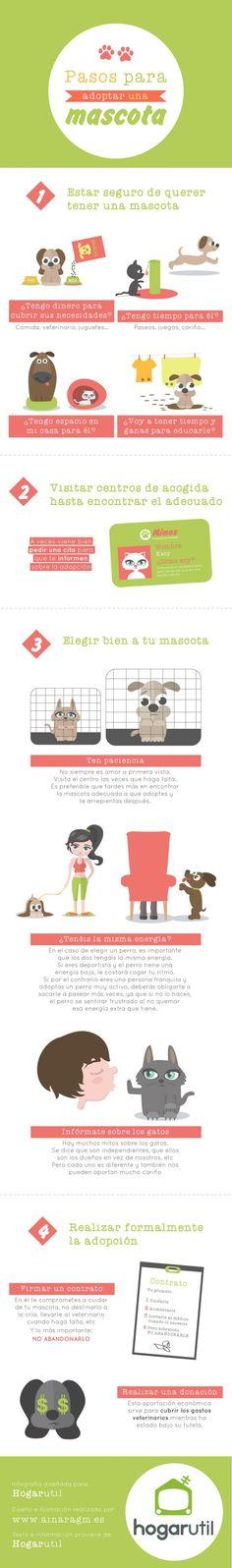 infografía de pasos para adoptar a una mascota. Conoce los pasos a seguir si estás pensando en adoptar un animal. #adopcion #mascotas