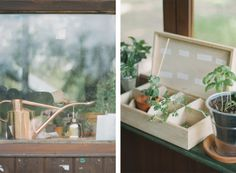 Gardening Collection by Thisispaper