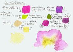 hellebaulne-13-copie-2.jpg