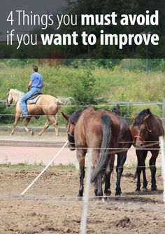 If you want to keep improving your horse riding, there are 4 things you must avoid. Take a guess which those are and read the article :)
