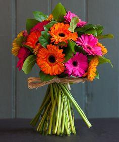 The Gerbera Bouquet Gerbera Daisy Bouquet, Gerbera Wedding, Gerbera Flower, Tulip Bouquet, Flower Bouquet Wedding, Gerbera Daisy Centerpiece, Gerbera Daisies, Tall Centerpiece, Centerpiece Wedding
