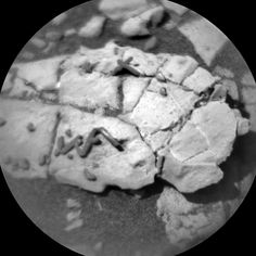 Happy New Year! Here's a new ChemCam image from Curiosity on Mars (sol 1921) of a rock with some interesting dark squiggly bits on it.