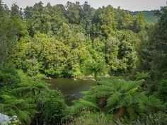 Im 2. Teil ihres Beitrags nimmt meine Mutter euch mit auf ihre Reise durch Neuseeland. Hier erzählt sie von unseren gemeinsamen 12 Tagen. Water, Outdoor, Middle Earth, New Zealand, Viajes, Water Water, Aqua, Outdoors, Outdoor Games