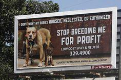 End puppy mills & breeding for profit