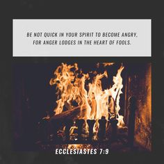 """""""Don't be too quick to get angry because anger lives in the fool's heart."""" Ecclesiastes 7:9 CEB http://bible.com/37/ecc.7.9.ceb"""