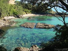 Matarangi, Coromandel, NZ - where my Aunty has her holiday home