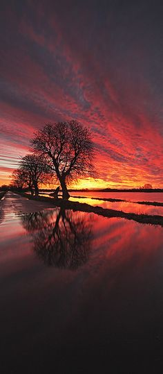 """Flooded Sunset"" by Peter Spencer49 on flickr"