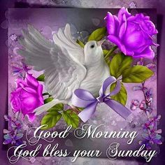 Good Morning God Bless Your Sunday good morning sunday sunday quotes good morning quotes happy sunday sunday blessings religious sunday quotes sunday quote happy sunday quotes good morning sunday sunday blessings quotes Sunday Wishes, Blessed Sunday, Morning Greetings Quotes, Good Morning Greetings, Good Morning Wishes, Morning Quotes, Night Quotes, Blessed Wednesday, Cute Good Morning Gif