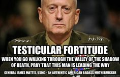 General James Mattis (Fired by Obama) He should be our next president!