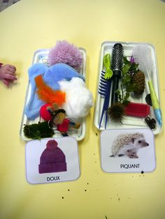 sensory boxes – the touch – classification: soft / spicy Science Montessori, Sensory Activities, Sensory Play, Preschool Activities, Sensory Tubs, Motor Activities, Diy For Kids, Crafts For Kids, French Teaching Resources