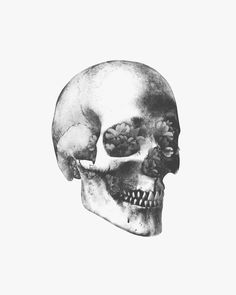 artcomesfirst: skull with flower