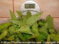 DSC08288 Diy Food, Recipes, Syrup, Canning, Ripped Recipes, Cooking Recipes, Medical Prescription