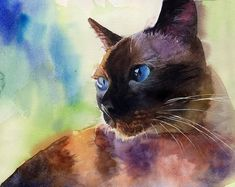 Traditional Applehead Siamese cat art Print of my watercolor painting Seal Point Chocolate Large Big Huge