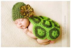 Cute turtle set