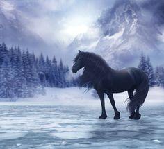 Winter Breath by hp-fallenangel.deviantart.com on @deviantART - PLEASE KEEP DESCRIPTION
