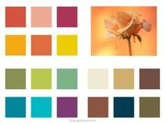 オータムタイプは、落ち着いていてシックな雰囲気の持ち主。ブラウン、モスグリーン、レンガ色、辛子色、オリーブなどが得意です。