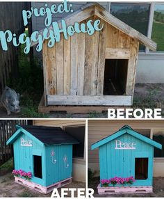 "Sadie, our Print Manager, went all out on a new home for her pot belly pig!  Project ""PiggyHouse"" was a success!"