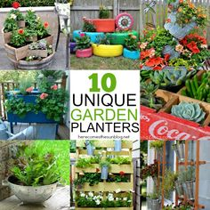 10 Unique Garden Planters | herecomesthesunblog.net
