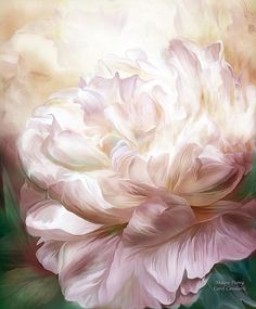 Mauve Peony Your intoxicating fragrance Filling the Spring air With the perfume of love.  Mauve Peony prose by Carol Cavalaris  This romantic painting of a mauve and cream colored peony in full bloom is from the Language Of Flowers collection of art by Carol Cavalaris. Also available in a white peony.