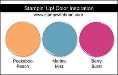 Stampin' Up! Color Inspiration: Peekaboo Peach, Marina Mist, Berry Burst
