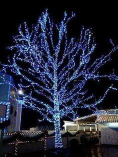 iluminacion navidea en una casa del barrio de dyker hights en brooklyn iluminacion pinterest nueva york navidad y house