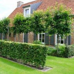 Jardin rural à Hoeven - Innen Garten - FR Garden Trellis Panels, Plants For Raised Beds, Garden Deco, Garden Seating, Garden Care, Back Gardens, Garden Paths, Backyard Landscaping, Amazing Gardens
