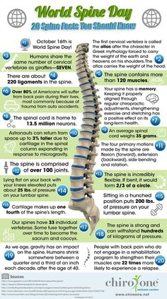 20 fun facts to learn in celebration of World Spine Day