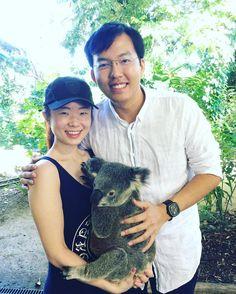 Koalas are so lovely!  #koala #travelgoldcoast #travelgram #traveldiaries #currumbinwildlifesanctuary #instagood #instatravel by charlottetay89 http://ift.tt/1X9mXhV