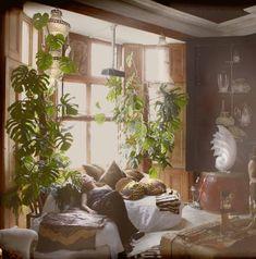 This houseplant for our sunroom ....Moon to Moon: Seductive Interiors by Sera Hersham-Loftus