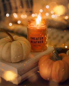Wishing you all a peaceful happy autumn ? Wishing you all a peaceful happy autumn ? Soirée Pyjama Party, Autumn Aesthetic, Cozy Aesthetic, Aesthetic Videos, Autumn Cozy, Autumn Coffee, Fall Wallpaper, Beautiful Gif, Autumn Photography