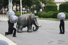 Brus Day – nullachtsechzehn Elephant, Day, Animals, Animales, Animaux, Elephants, Animal, Animais