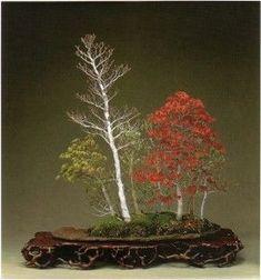 b1kato-смешанные леса forest1-280x300