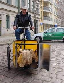 Nihola Dog - a cargo bike for doglovers