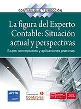 La figura del experto contable : situación actual y perspectivas