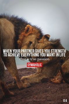 When Your Partner Gives You Strength Fitness Made Simple - Lion Quotes, Me Quotes, Motivational Quotes, Inspirational Quotes, Qoutes, Lion Love, Gym Quote, Fit Couples, Gymaholic