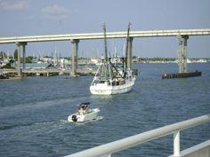 Shrimp boats are a comin, Ft. Myers Beach, FL