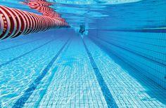"""Inauguração de complexo aquático é cancelada -     A cerimônia de inauguração do Complexo Aquático """"Maria EncarnaçãoEstadella"""", que aconteceria nesta sexta-feira, dia 23, foi canceladodevido à necessidade de tratamento da água de uma das piscinas. Em nota, a Prefeitura de Botucatu diz que divulgará em breve uma nova data para a entr - http://acontecebotucatu.com.br/cidade/inauguracao-de-complexo-aquatico-e-cancelada/"""