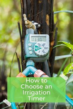 Find out which irrigation timer you should choose for your lawn regardless if you are a set it and forget it type of person or you want the ultimate control of your watering and irrigation needs. Find out how to choose an irrigation timer for your lawn or garden. #lawnwork #sprinklers #watering #irrigation #smarthome #grass #gardening Irrigation Timer, Grow Your Own Food, Lawn Care, Stuff To Do, Garden Tools, Sprinklers, Clock, Christmas Ornaments, Holiday Decor
