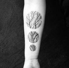 Tree Circles by Martynas Šnioka