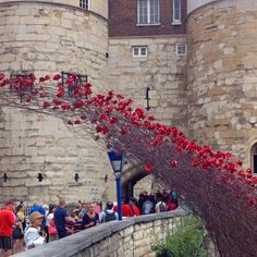 Blood Swept Lands and Seas of Red poppies installation at the Tower of London.