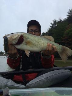 Big One ! #Bass #fishing #Top Water