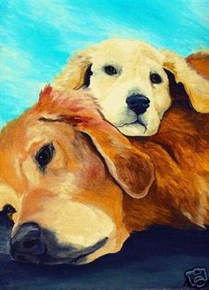Shop Golden Retriever and Puppy Postcard created by vernsart. Mini Golden Retriever, Golden Retrievers, Dog Signs, Dog Art, Pet Portraits, Dogs And Puppies, Art Prints, Artwork, Painting