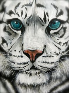 tiger face paint - Google Search