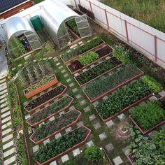 планирование сада и огорода на