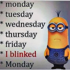 Los Angeles Minions Quotes (12:38:06 PM, Saturday 28, May 2016 PDT) – 30 pics